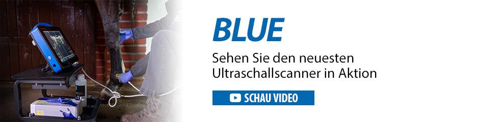 Hochmoderner Ultraschallscanner Dramiński Blue zur Pferdediagnose